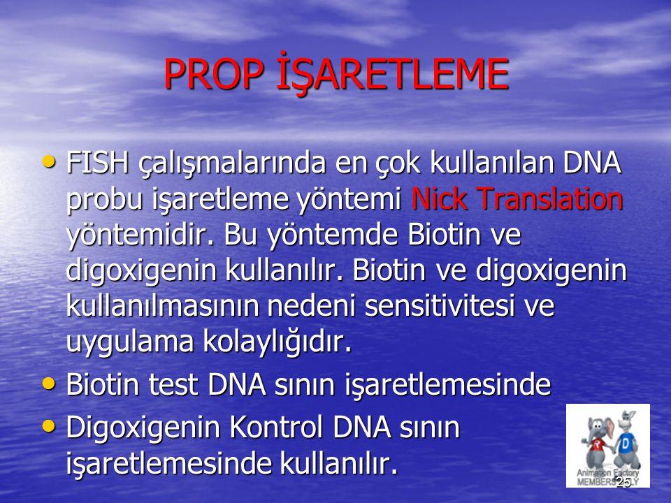 PROP İŞARETLEME
