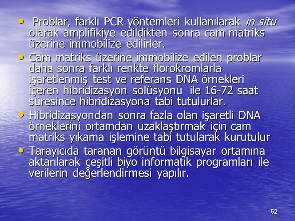 Problar, farklı PCR yöntemleri kullanılarak in situ olarak amplifikiye edildikten sonra cam matriks üzerine immobilize edilirler.