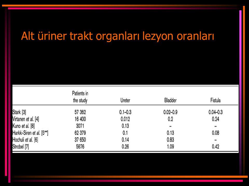 Alt üriner trakt organları lezyon oranları