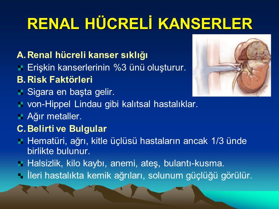 RENAL HÜCRELİ KANSERLER
