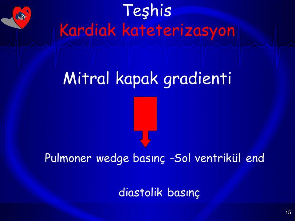 Teşhis Kardiak kateterizasyon