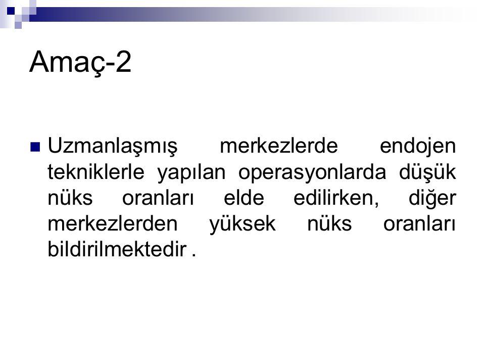 Amaç-2