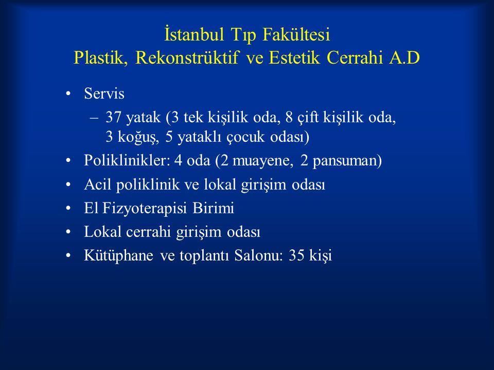 İstanbul Tıp Fakültesi Plastik, Rekonstrüktif ve Estetik Cerrahi A.D