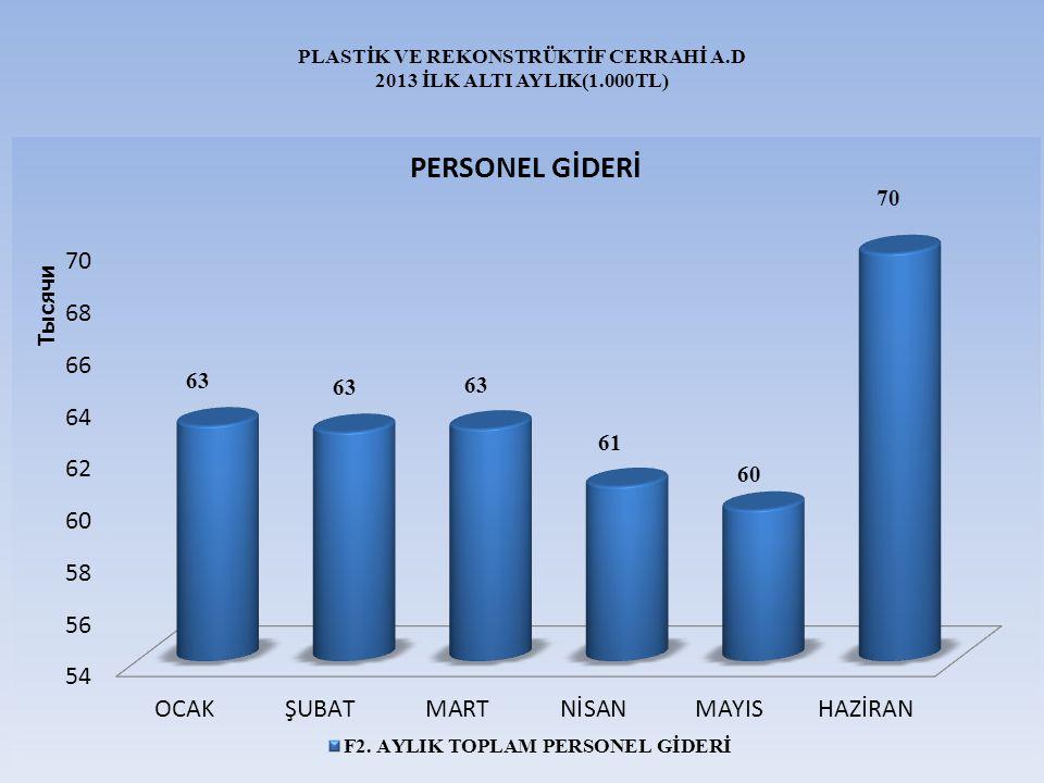 PLASTİK VE REKONSTRÜKTİF CERRAHİ A.D 2013 İLK ALTI AYLIK(1.000TL)