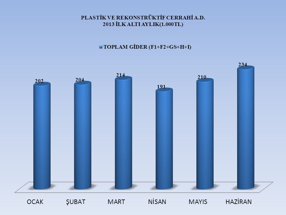 PLASTİK VE REKONSTRÜKTİF CERRAHİ A.D. 2013 İLK ALTI AYLIK(1.000TL)