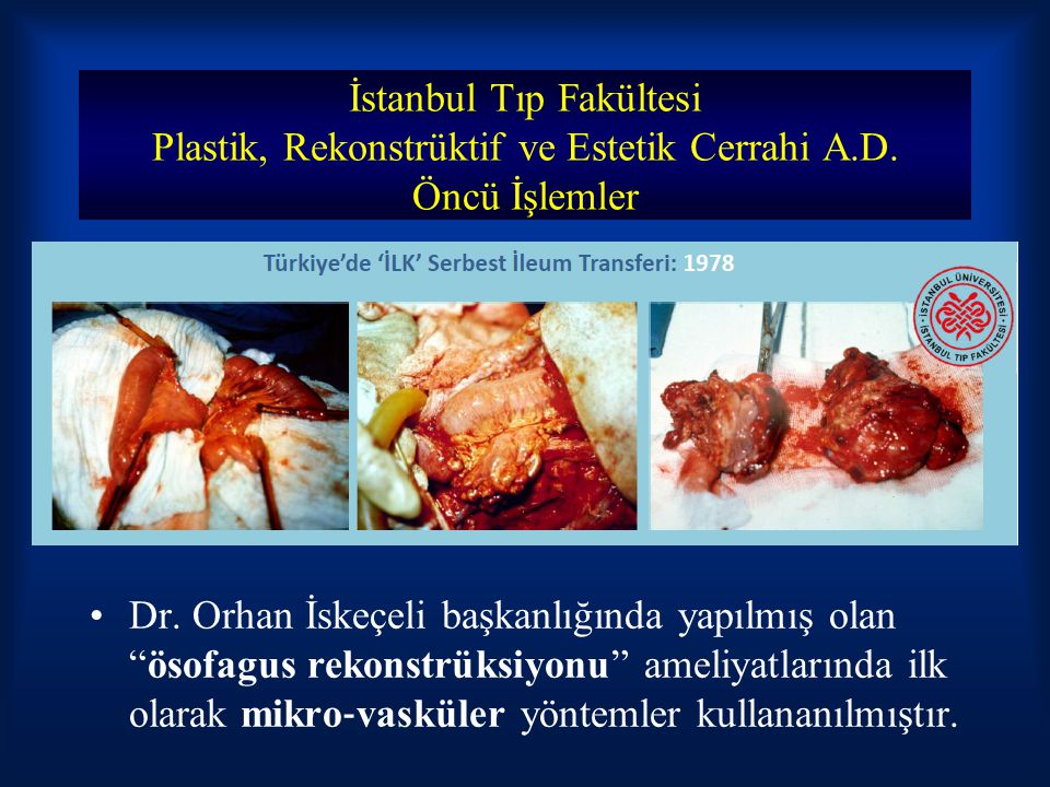 İstanbul Tıp Fakültesi Plastik, Rekonstrüktif ve Estetik Cerrahi A. D