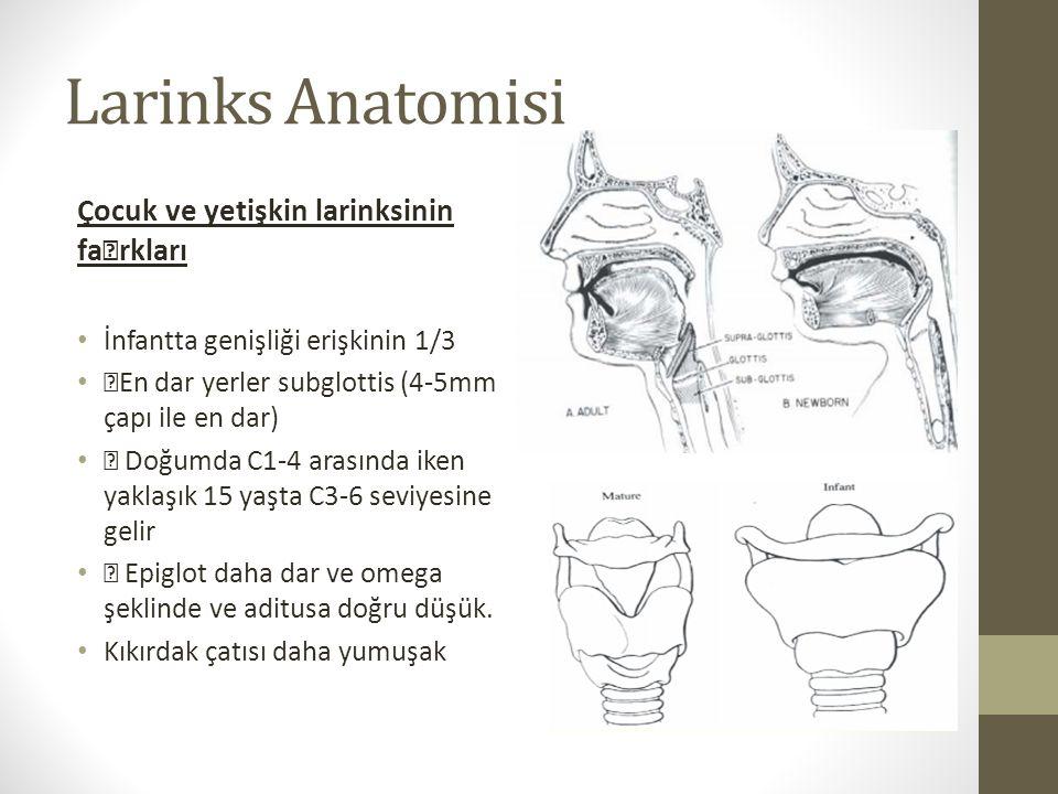 """Larinks Anatomisi Çocuk ve yetişkin larinksinin fa""""rkları"""