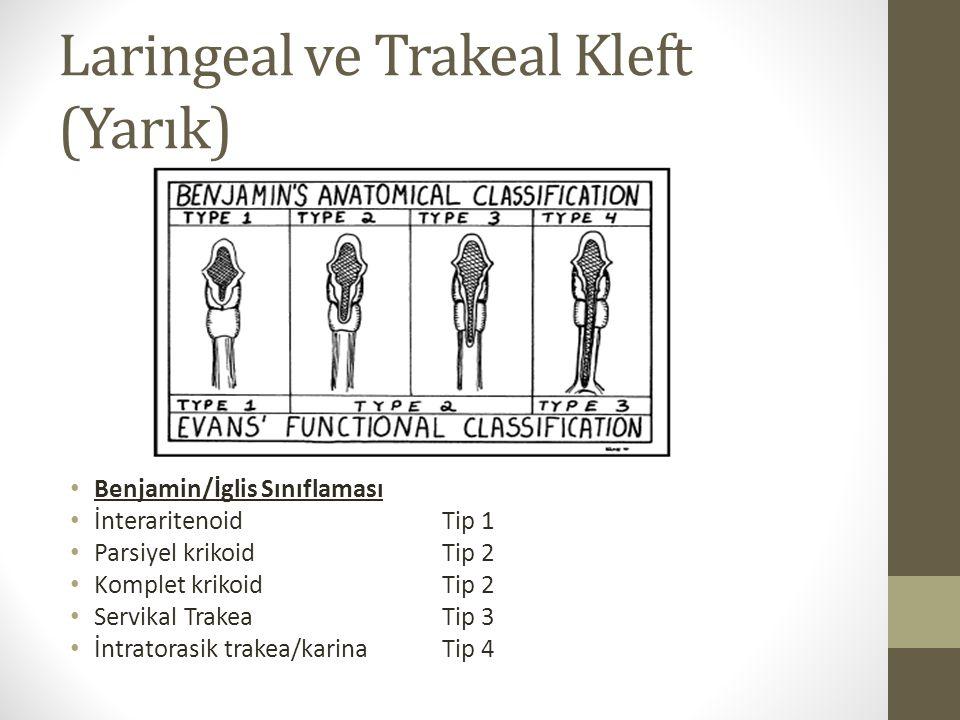 Laringeal ve Trakeal Kleft (Yarık)