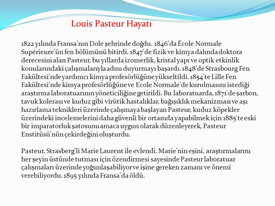 Louis Pasteur Hayatı