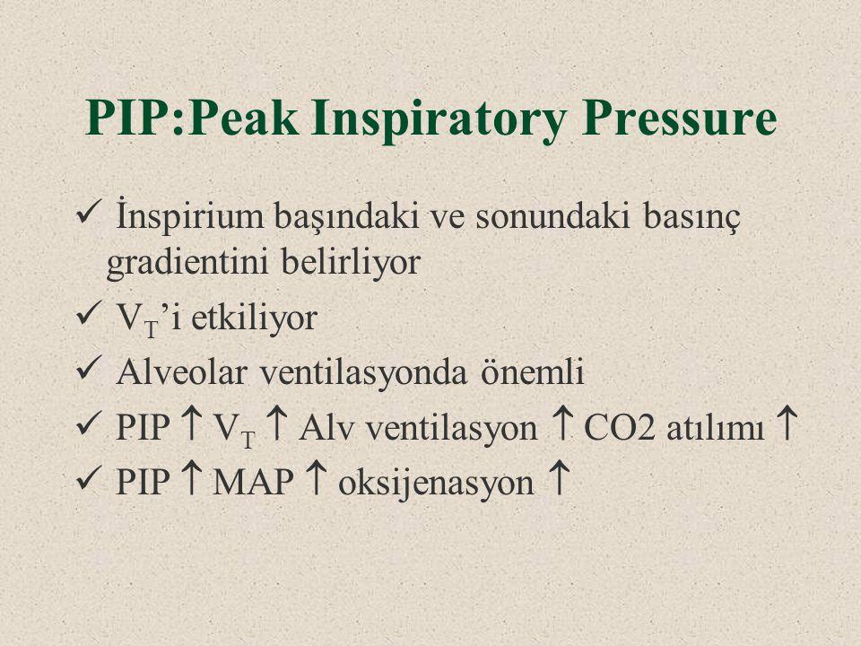 PIP:Peak Inspiratory Pressure