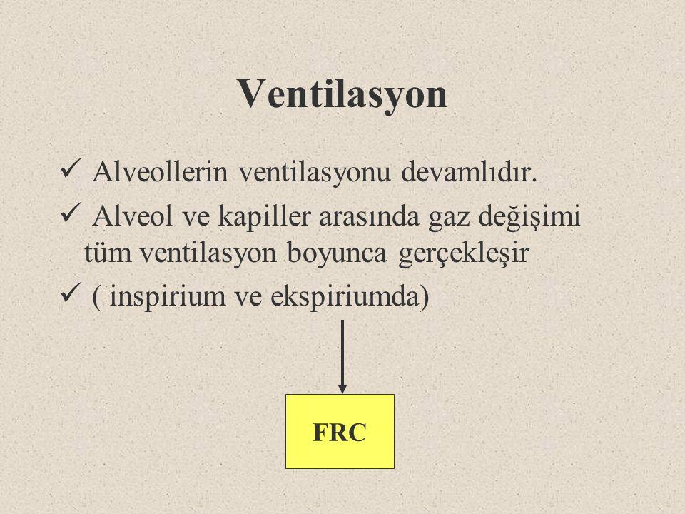 Ventilasyon Alveollerin ventilasyonu devamlıdır.