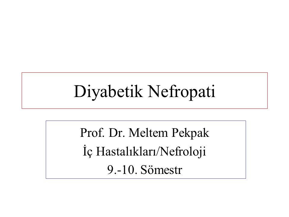 Prof. Dr. Meltem Pekpak İç Hastalıkları/Nefroloji 9.-10. Sömestr