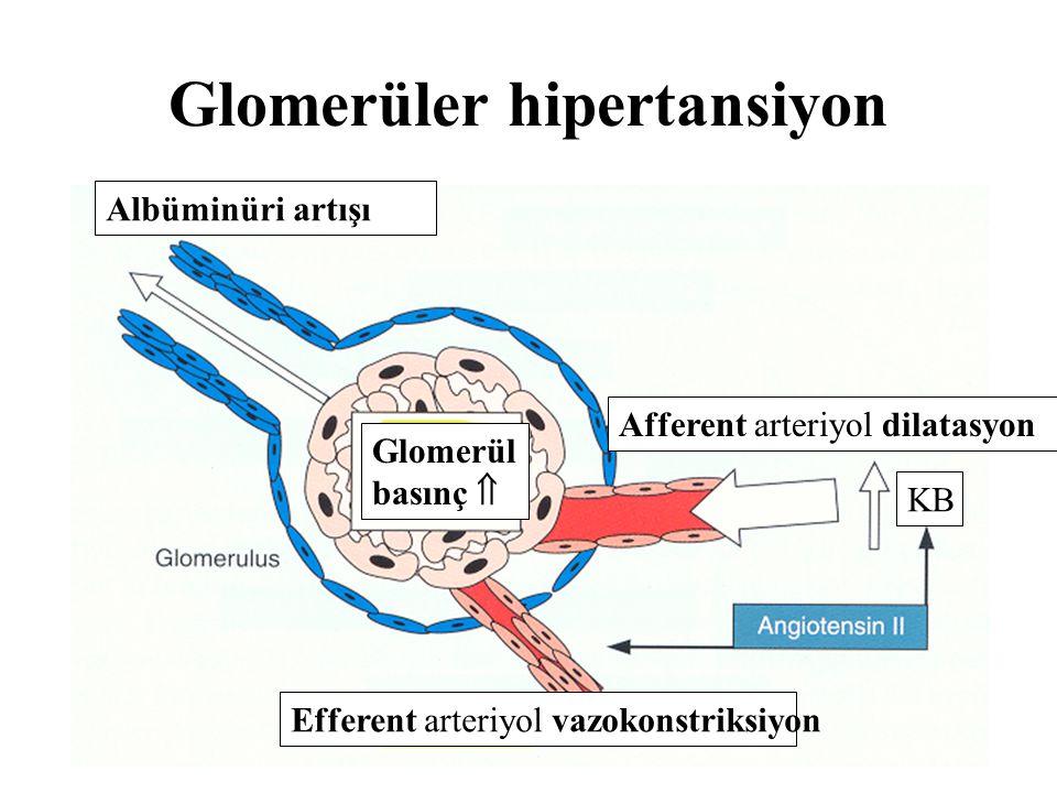 Glomerüler hipertansiyon