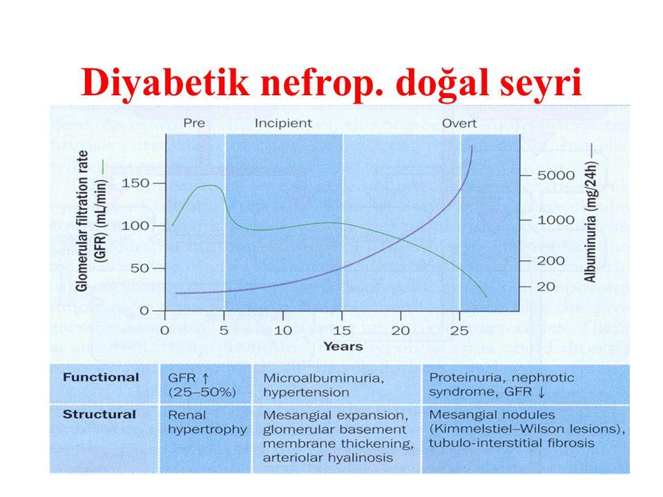 Diyabetik nefrop. doğal seyri