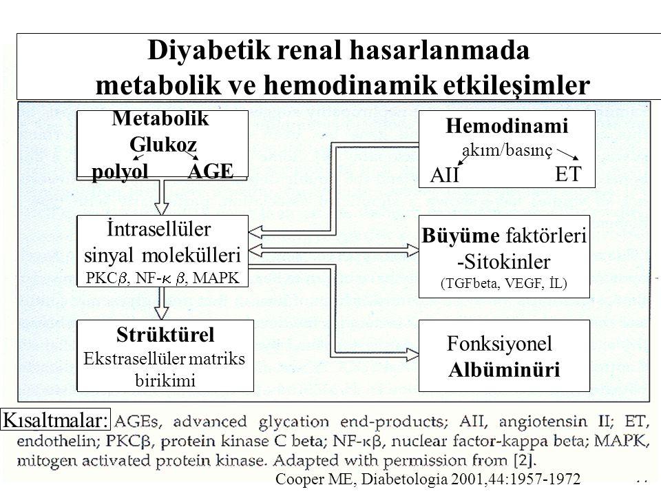 Diyabetik renal hasarlanmada metabolik ve hemodinamik etkileşimler
