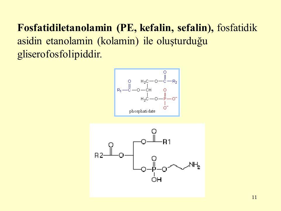 Fosfatidiletanolamin (PE, kefalin, sefalin), fosfatidik asidin etanolamin (kolamin) ile oluşturduğu gliserofosfolipiddir.