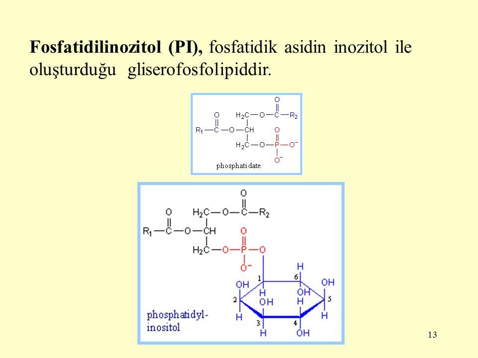 Fosfatidilinozitol (PI), fosfatidik asidin inozitol ile oluşturduğu gliserofosfolipiddir.