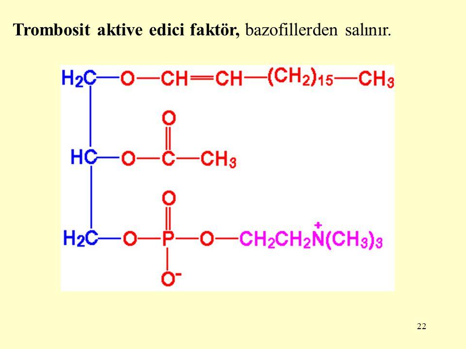 Trombosit aktive edici faktör, bazofillerden salınır.