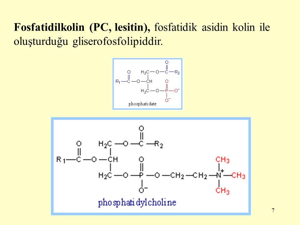 Fosfatidilkolin (PC, lesitin), fosfatidik asidin kolin ile oluşturduğu gliserofosfolipiddir.