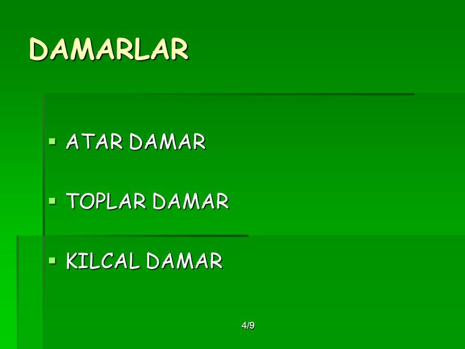DAMARLAR ATAR DAMAR TOPLAR DAMAR KILCAL DAMAR 4/9
