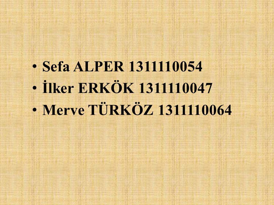 Sefa ALPER 1311110054 İlker ERKÖK 1311110047 Merve TÜRKÖZ 1311110064