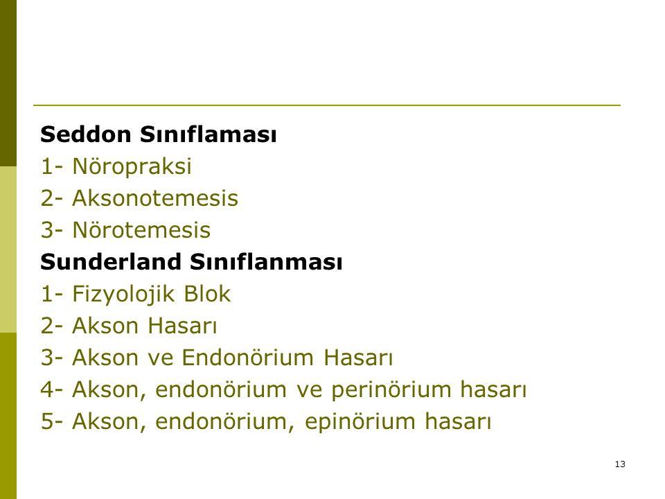 Seddon Sınıflaması 1- Nöropraksi. 2- Aksonotemesis. 3- Nörotemesis. Sunderland Sınıflanması. 1- Fizyolojik Blok.