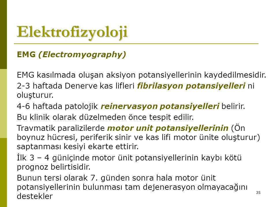 Elektrofizyoloji EMG (Electromyography)