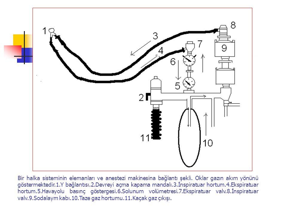 Bir halka sisteminin elemanları ve anestezi makinesina bağlantı şekli
