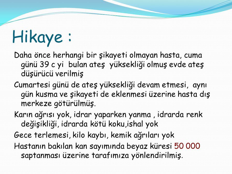 Hikaye :