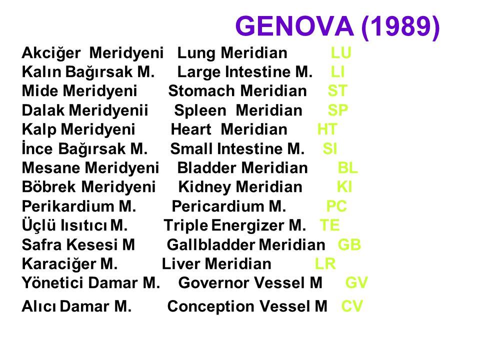 GENOVA (1989) Akciğer Meridyeni Lung Meridian LU