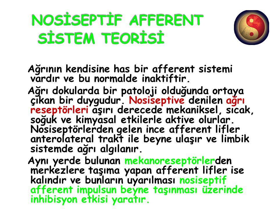 NOSİSEPTİF AFFERENT SİSTEM TEORİSİ