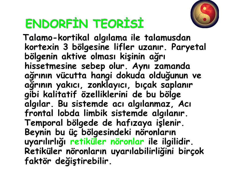 ENDORFİN TEORİSİ