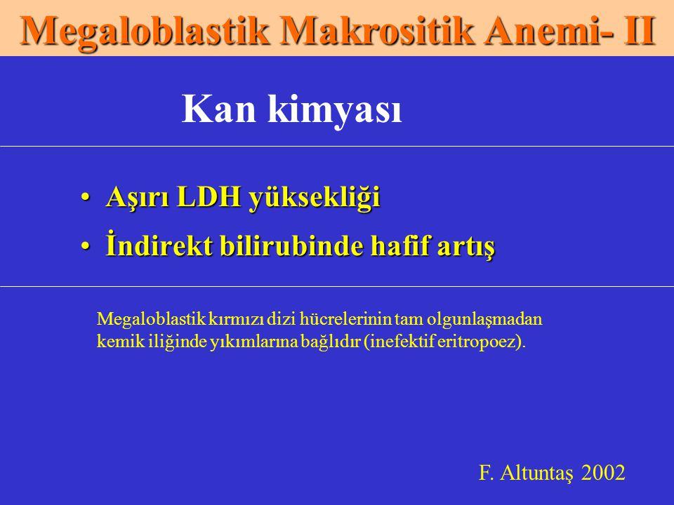 Megaloblastik Makrositik Anemi- II
