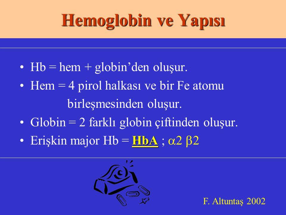 Hemoglobin ve Yapısı Hb = hem + globin'den oluşur.