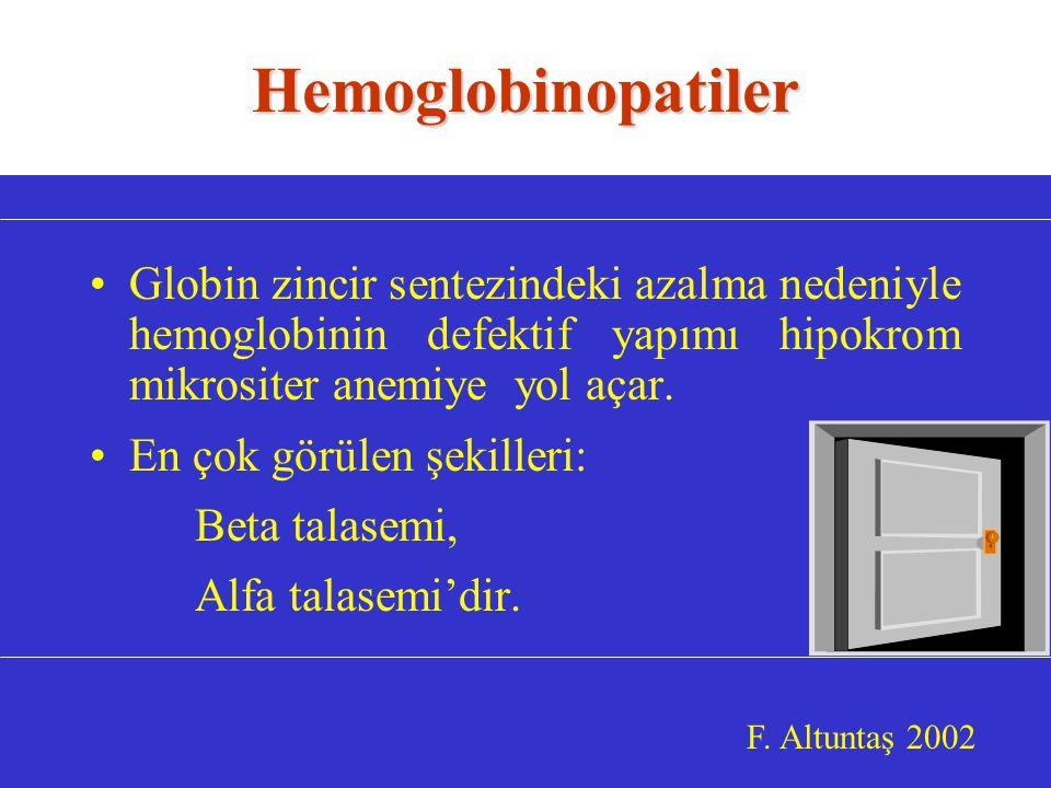Hemoglobinopatiler Globin zincir sentezindeki azalma nedeniyle hemoglobinin defektif yapımı hipokrom mikrositer anemiye yol açar.