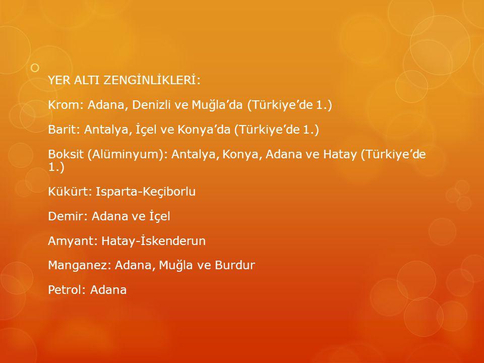 YER ALTI ZENGİNLİKLERİ: Krom: Adana, Denizli ve Muğla'da (Türkiye'de 1