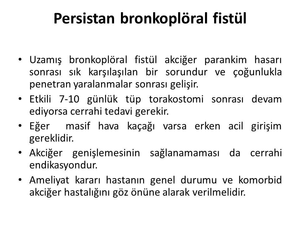 Persistan bronkoplöral fistül