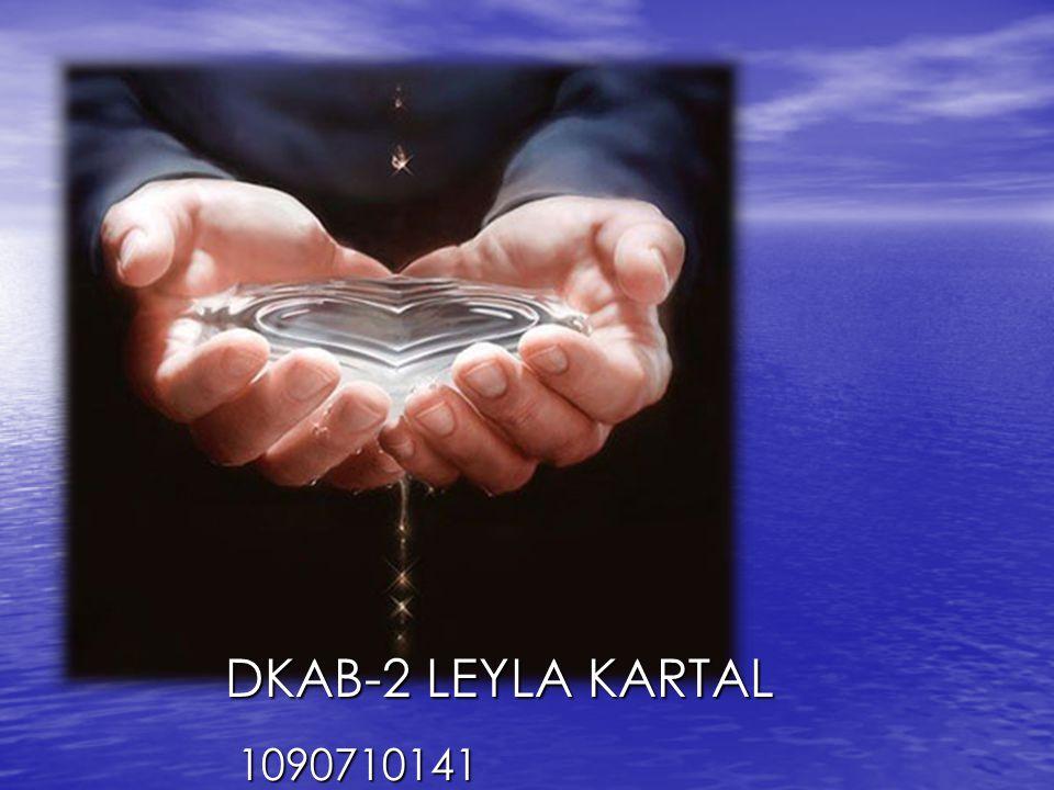 LEYLA KARTAL DKAB-2 LEYLA KARTAL 1090710141