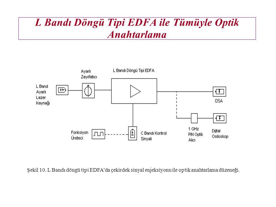 L Bandı Döngü Tipi EDFA ile Tümüyle Optik Anahtarlama