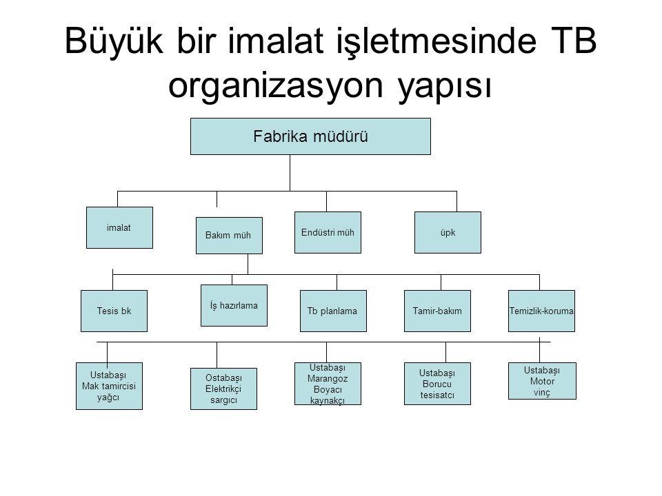 Büyük bir imalat işletmesinde TB organizasyon yapısı