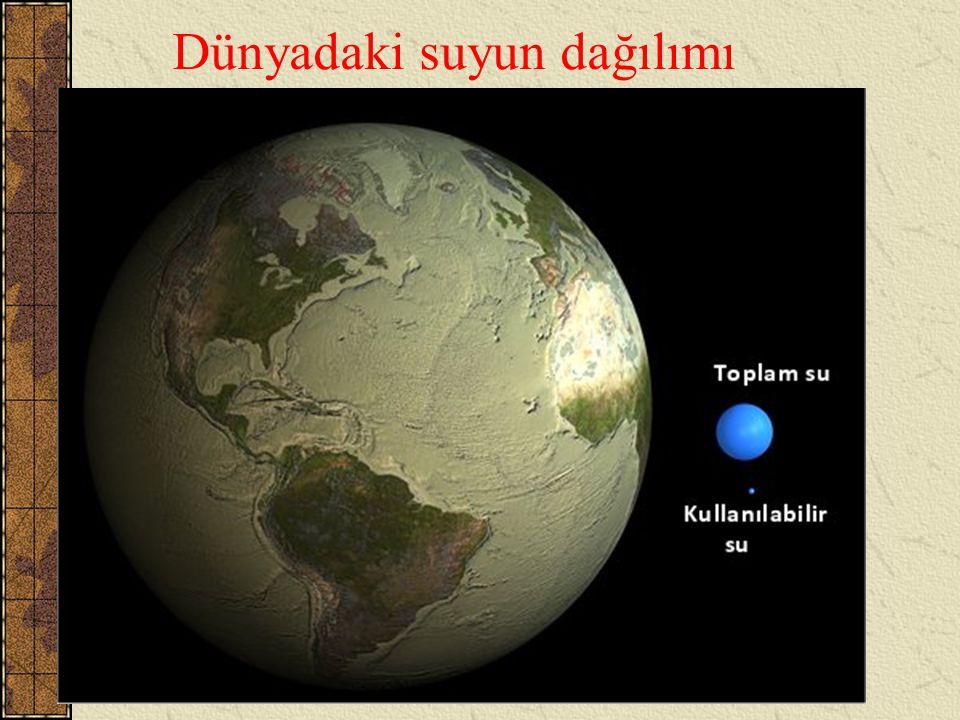 Dünyadaki suyun dağılımı