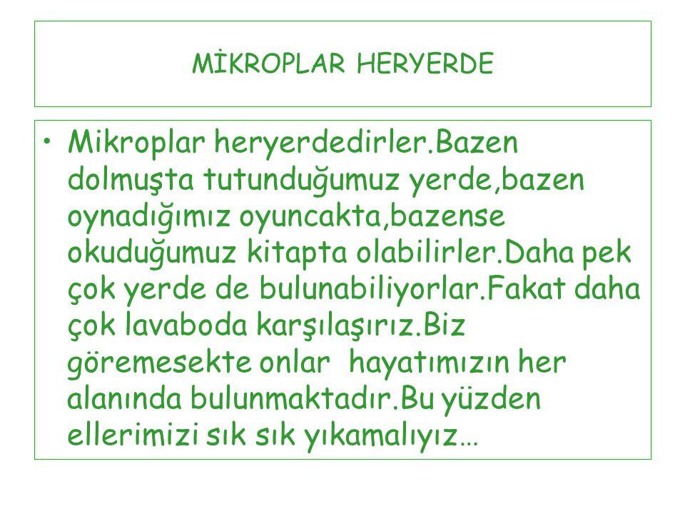 MİKROPLAR HERYERDE