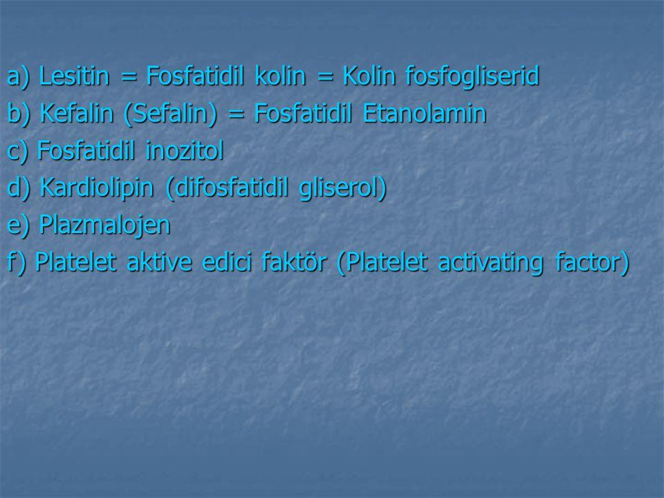 a) Lesitin = Fosfatidil kolin = Kolin fosfogliserid