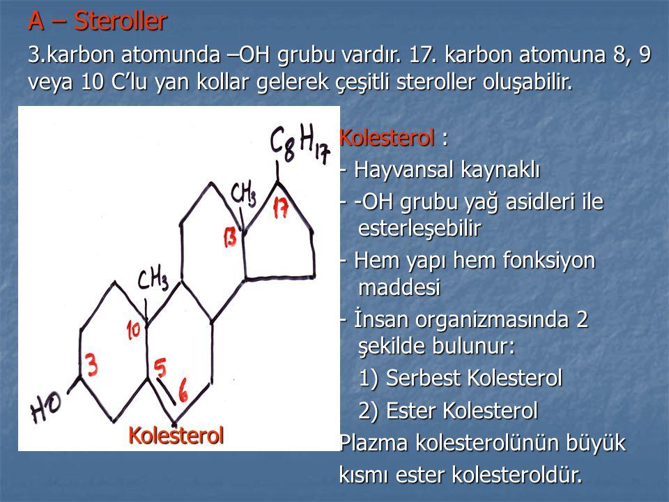 A – Steroller 3.karbon atomunda –OH grubu vardır. 17. karbon atomuna 8, 9 veya 10 C'lu yan kollar gelerek çeşitli steroller oluşabilir.