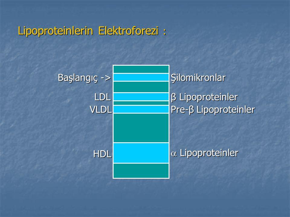 Lipoproteinlerin Elektroforezi :