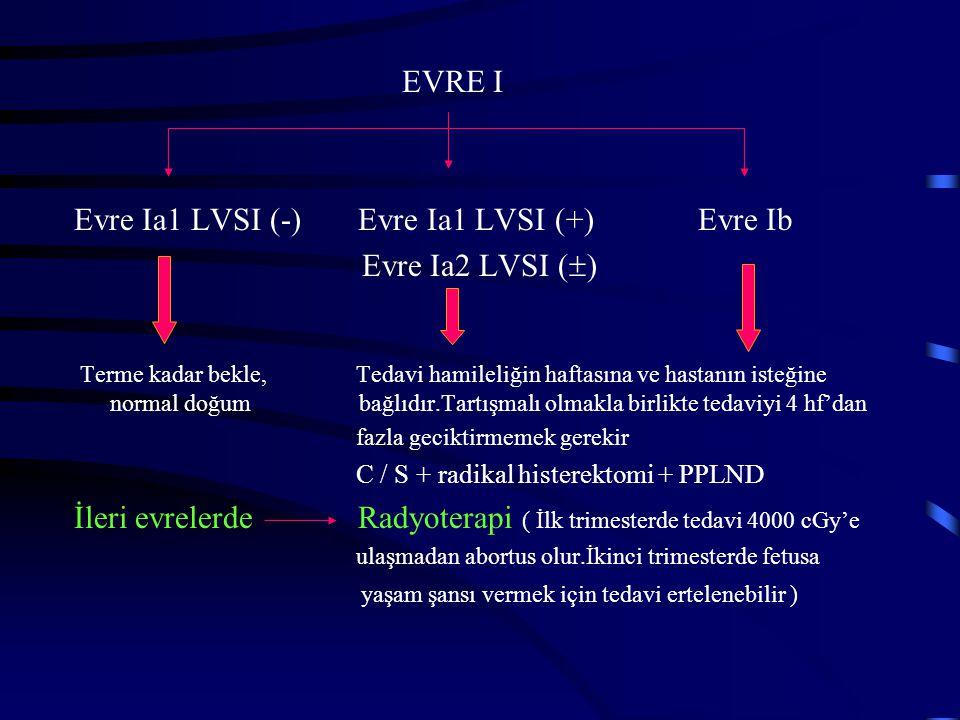 Evre Ia1 LVSI (-) Evre Ia1 LVSI (+) Evre Ib Evre Ia2 LVSI ()