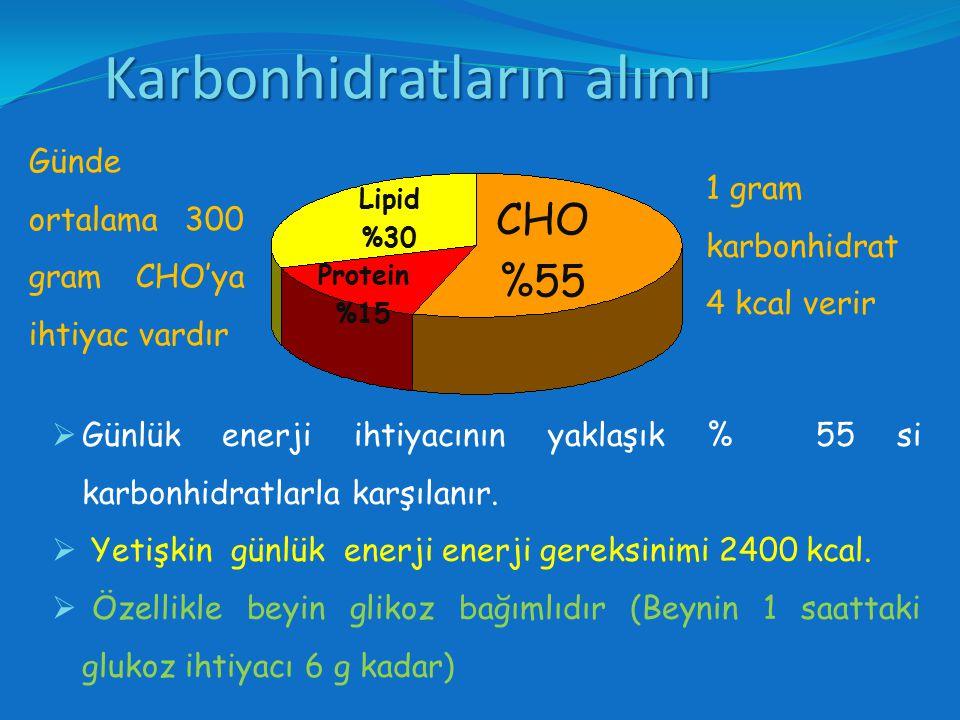 Karbonhidratların alımı