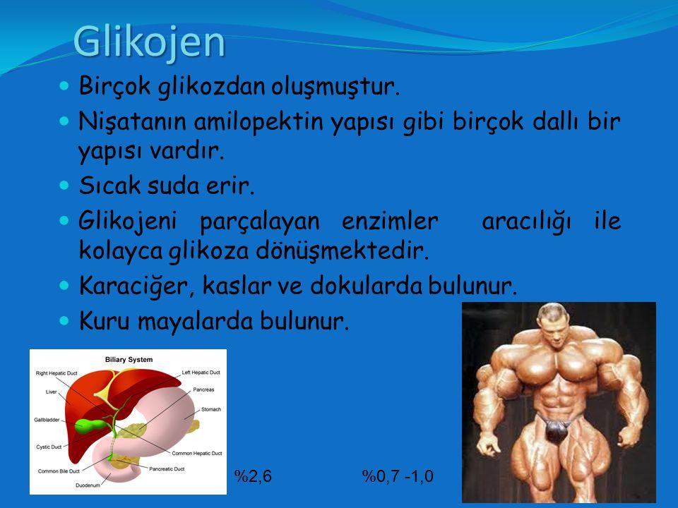 Glikojen Birçok glikozdan oluşmuştur.