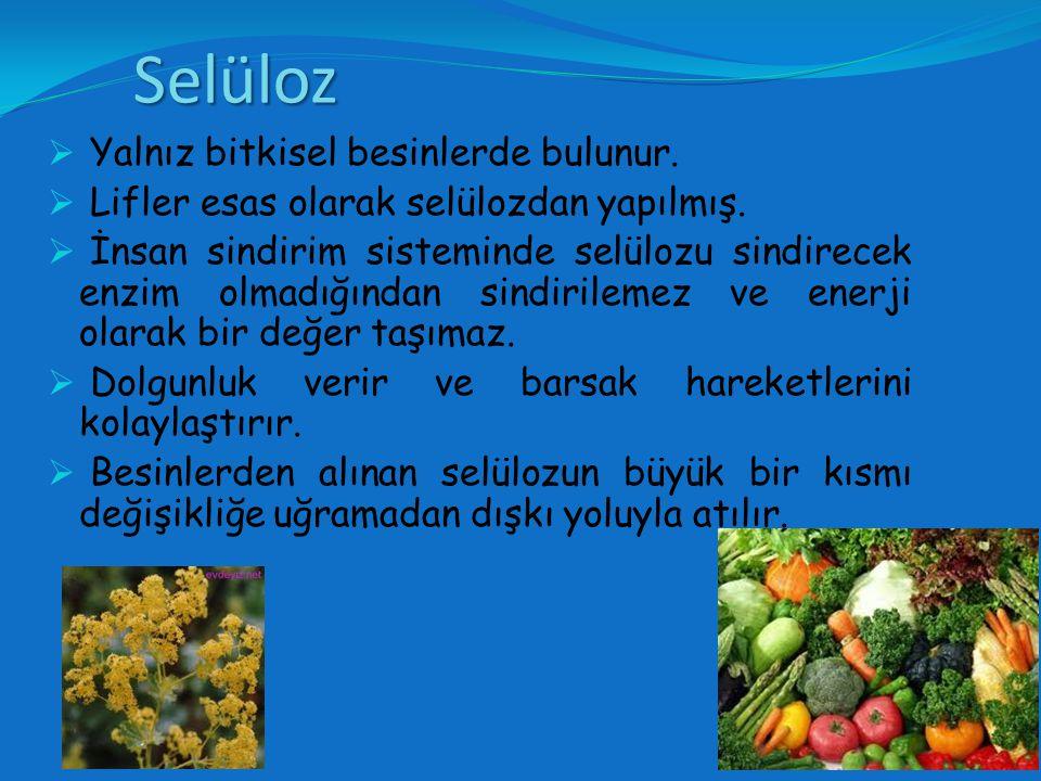 Selüloz Yalnız bitkisel besinlerde bulunur.