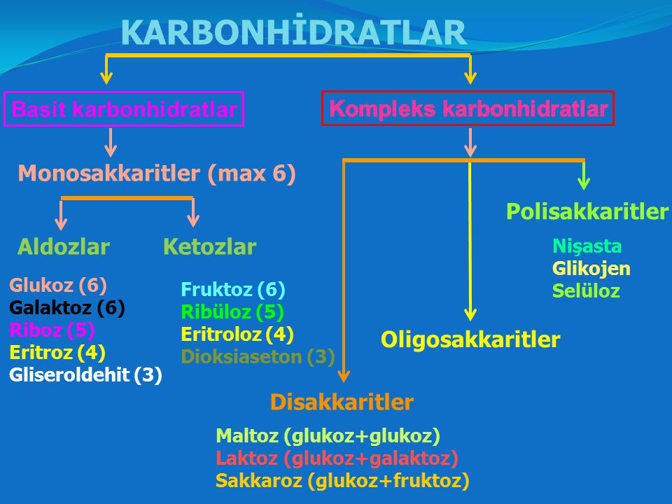 KARBONHİDRATLAR Basit karbonhidratlar Kompleks karbonhidratlar